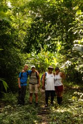 Corcovado Forest Hike-4013