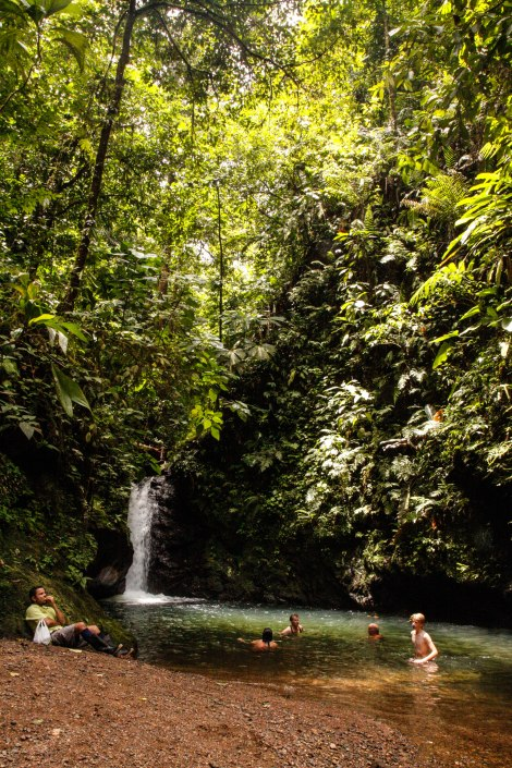 Corcovado Forest Hike-4040