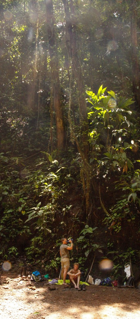Corcovado Forest Hike-4075