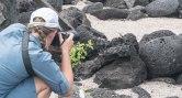 Wildlife Photographer at Work!