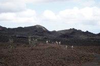 Volcano Hike-2477